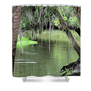 River Scenic Shower Curtain