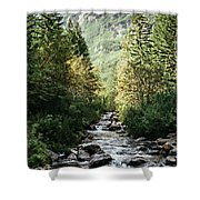 River Stream In Mountain Forest Shower Curtain
