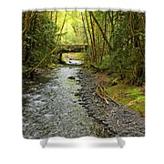 River Through The Rainforest Shower Curtain