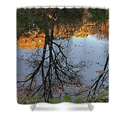 River Trees Shower Curtain