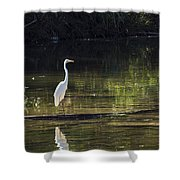 River Wader Shower Curtain
