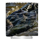 River Washed Rock Shower Curtain