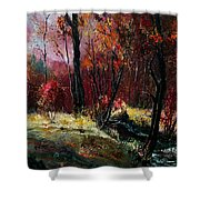 River Ywoigne Shower Curtain