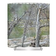 River008 Shower Curtain