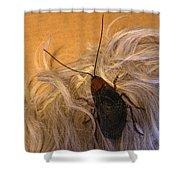 Roach Hair Clip Shower Curtain