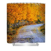 Road Between Trees Shower Curtain