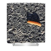 Road Caterpillar Shower Curtain