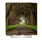 Road From The Station Shower Curtain