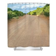 Road In Tanzania Shower Curtain