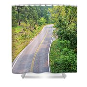 Road In The Black Hills Shower Curtain