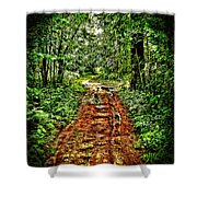 Road In The Wilderness Shower Curtain