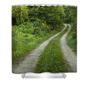 Road In Woods 1 D Shower Curtain