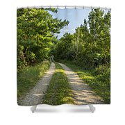 Road In Woods 1 F Shower Curtain