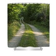 Road In Woods 1 H Windy Shower Curtain