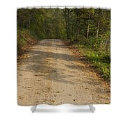 Road In Woods Autumn 2 A Shower Curtain