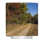 Road In Woods Autumn 5 Shower Curtain