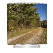 Road In Woods Autumn 6 Shower Curtain