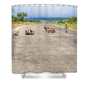 Road In Zambia Shower Curtain