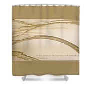 Road Is A Journey Shower Curtain