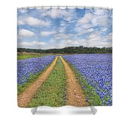 Road Of Bluebonnets  Shower Curtain