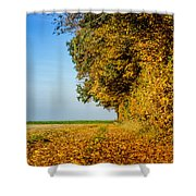 Road Of Leaves Shower Curtain