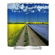 Road Through Flowering Flax And Canola Shower Curtain