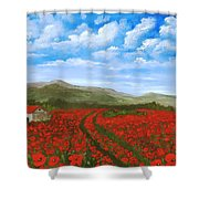 Road Through The Poppy Field Shower Curtain