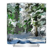 Road Through The Snow Shower Curtain