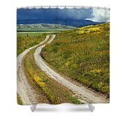 Road Through The Wildflowers Shower Curtain