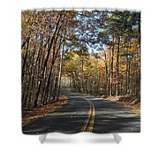 Road To Autumn Shower Curtain