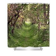 Road To Ballynoe Shower Curtain