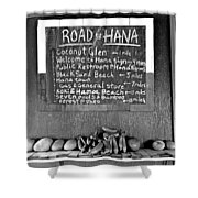 Road To Hana Study 02 Shower Curtain