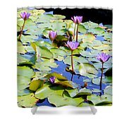 Road To Hana Water Lilies Shower Curtain
