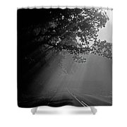 Road With Early Morning Fog Shower Curtain