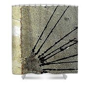 Roadside Attraction Shower Curtain