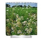 Roadside Bouquet Of Wildflowers In Mchenry County Shower Curtain