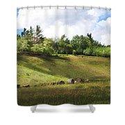 Roadside Hill Shower Curtain