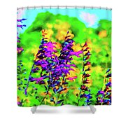 Roadside Wildflowers Shower Curtain