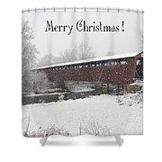 Roann Christmas Shower Curtain