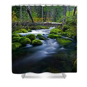 Roaring River Shower Curtain
