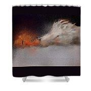 Roasting Chestnuts Shower Curtain