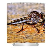 Robber Fly 001 Shower Curtain