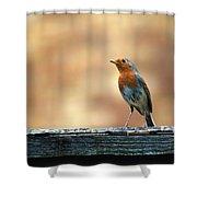 Robin 2 Shower Curtain