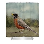 Robin Abstract Background Shower Curtain