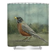 Robin Abstract Background With Texture Shower Curtain