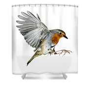 Robin Alighting Shower Curtain