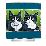Robin And Batcat - Twin Tuxedo Cat Painting Shower Curtain