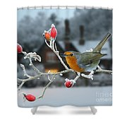 Robin And Rose Hips Shower Curtain