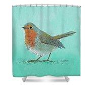 Robin Bird Painting Shower Curtain