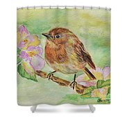 Robin In Flowers Shower Curtain